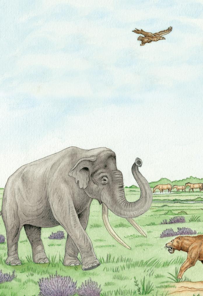mastodont_small