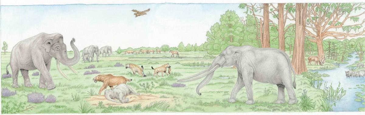 Herfstworkshop – Fossielentocht